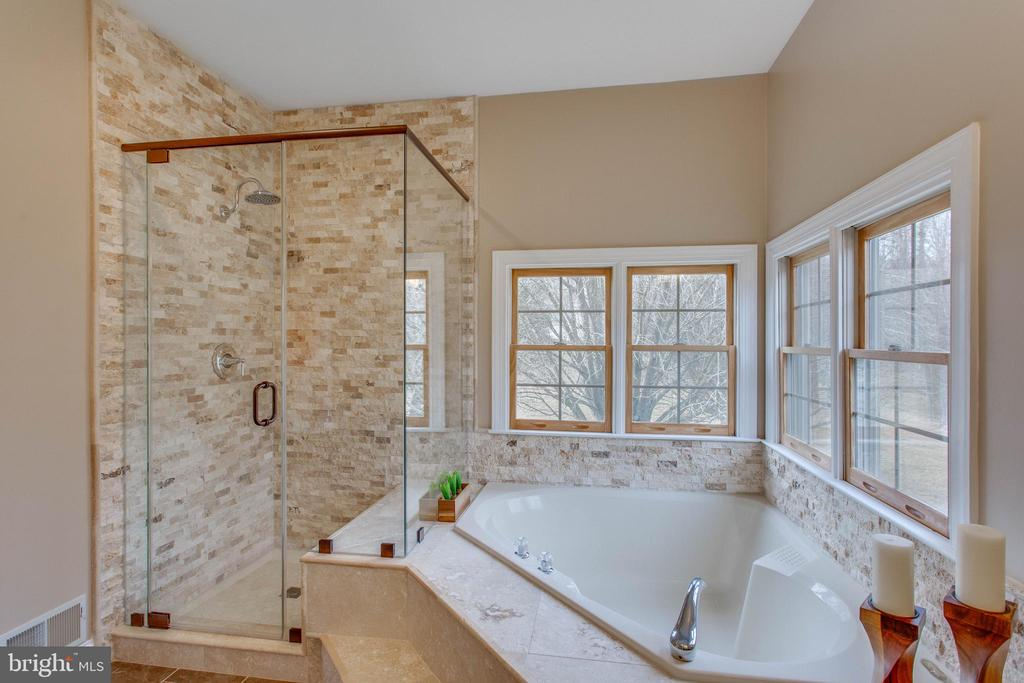 Expansive, 4-piece, main-level bathroom-perfect! - 12060 ROSE HALL DR, CLIFTON