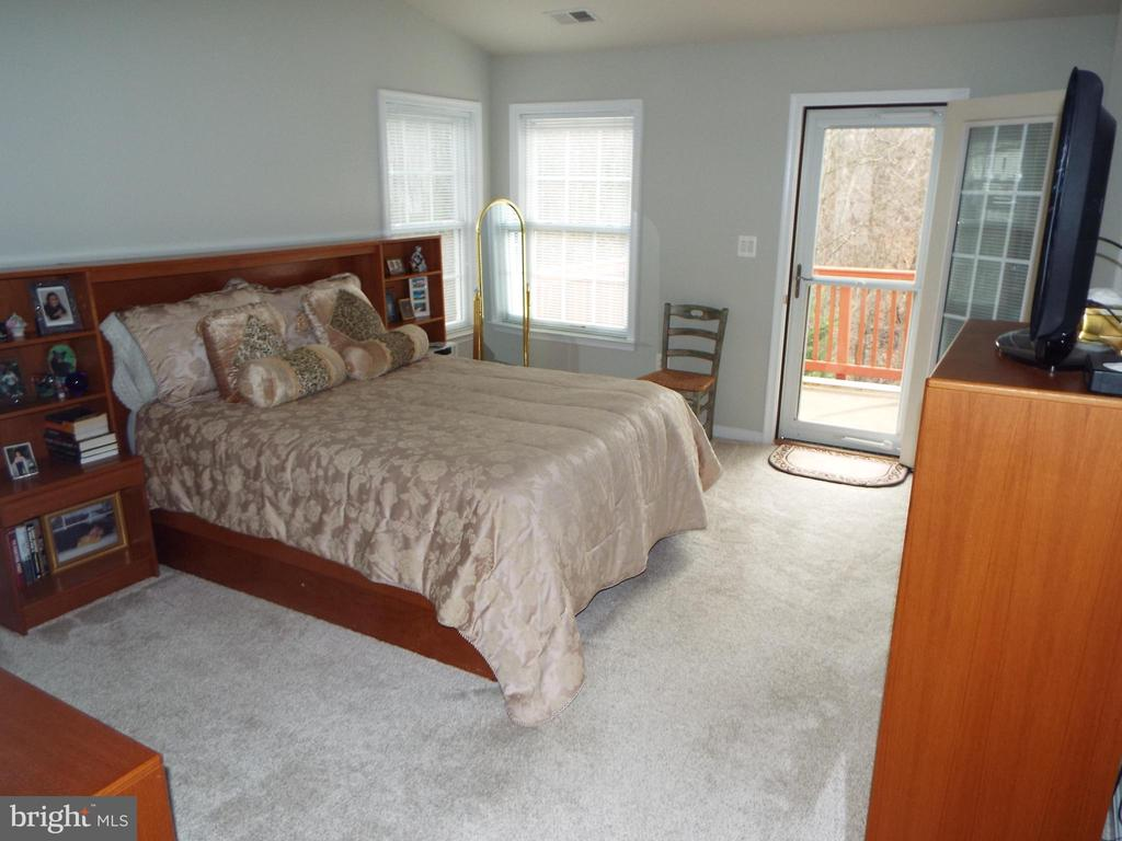 Master Bedroom - 20344 CENTER BROOK SQ, STERLING