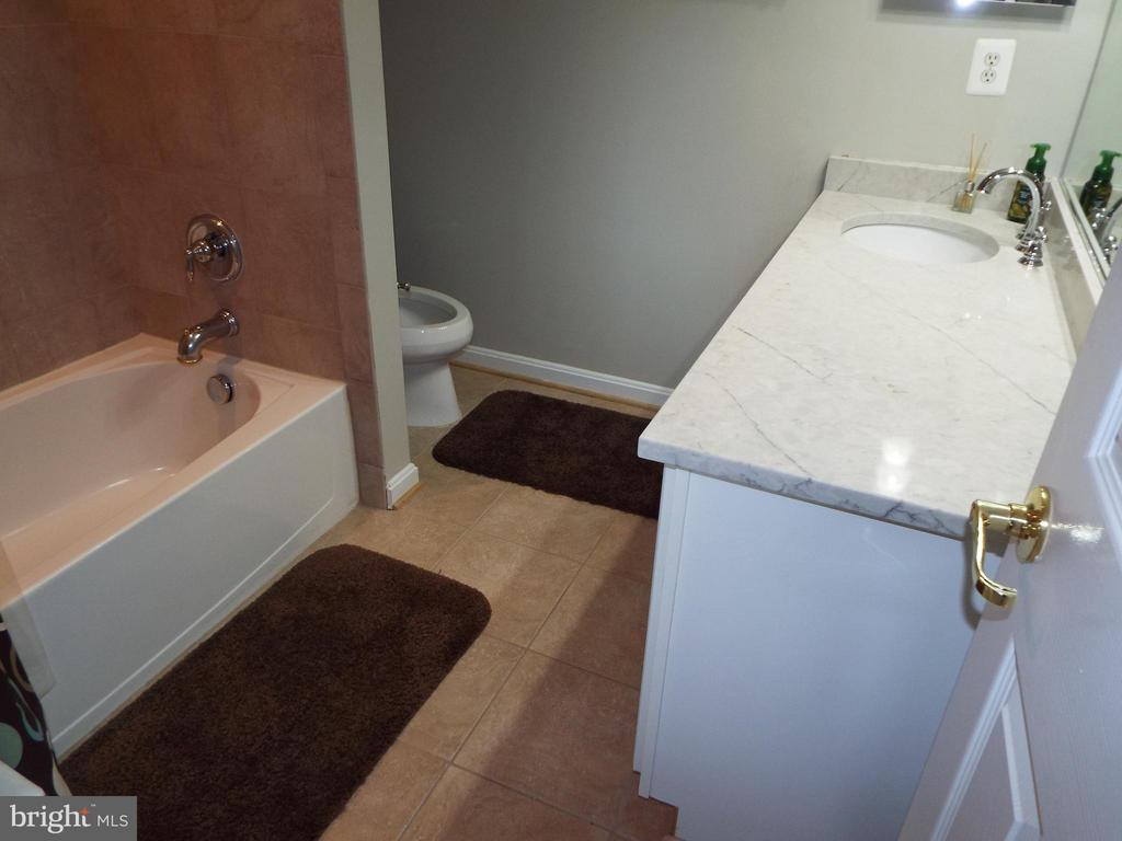 Hall Bath - 20344 CENTER BROOK SQ, STERLING