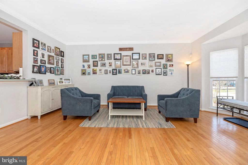 Living Room - 25371 DAMASCUS PARK TER, DAMASCUS