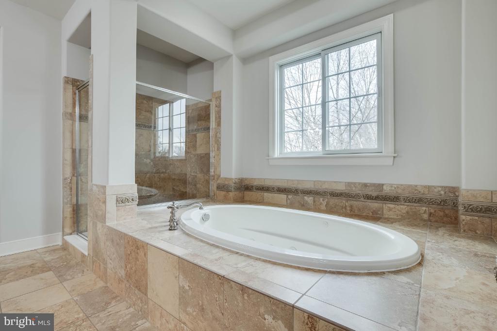Luxury Master Bathroom with Soaking Tub & Shower - 21883 KNOB HILL PL, ASHBURN
