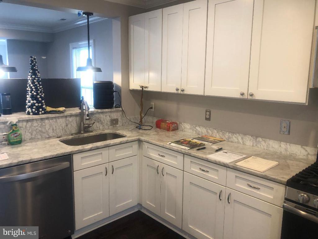 Kitchen and Dishwasher - 3002 FRANKLIN ST NE, WASHINGTON