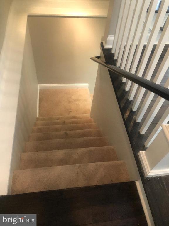 Basement Steps - 3002 FRANKLIN ST NE, WASHINGTON
