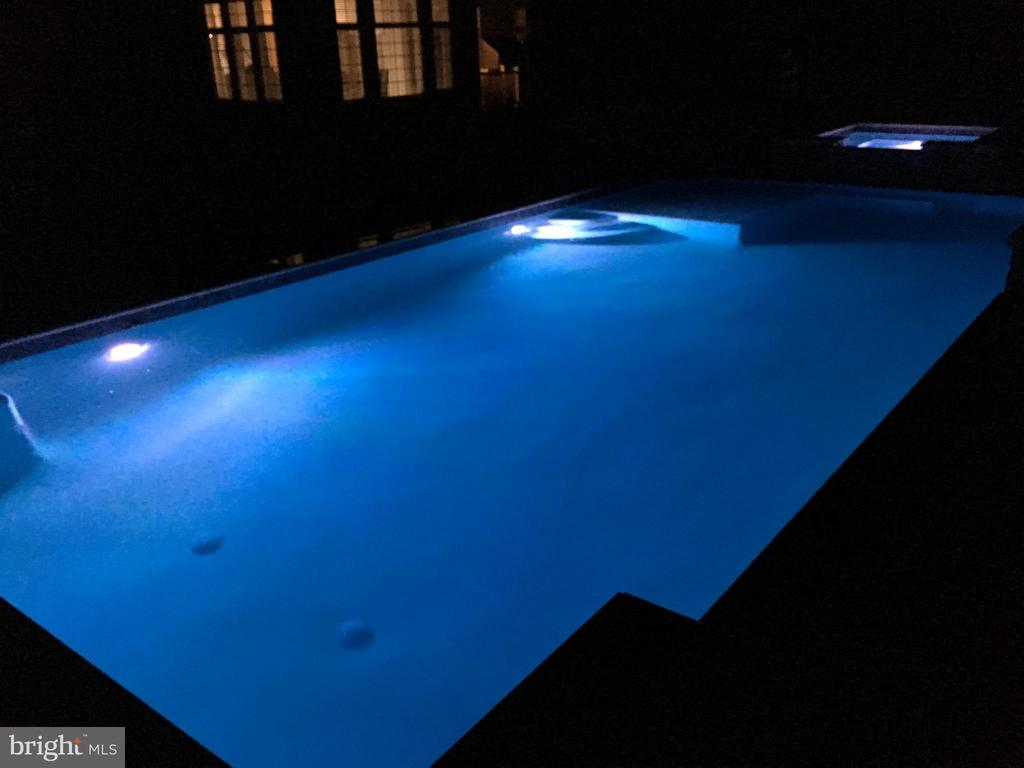 The pool at night - 36335 SILCOTT MEADOW PL, PURCELLVILLE