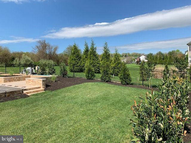 Summer view of the yard - 36335 SILCOTT MEADOW PL, PURCELLVILLE
