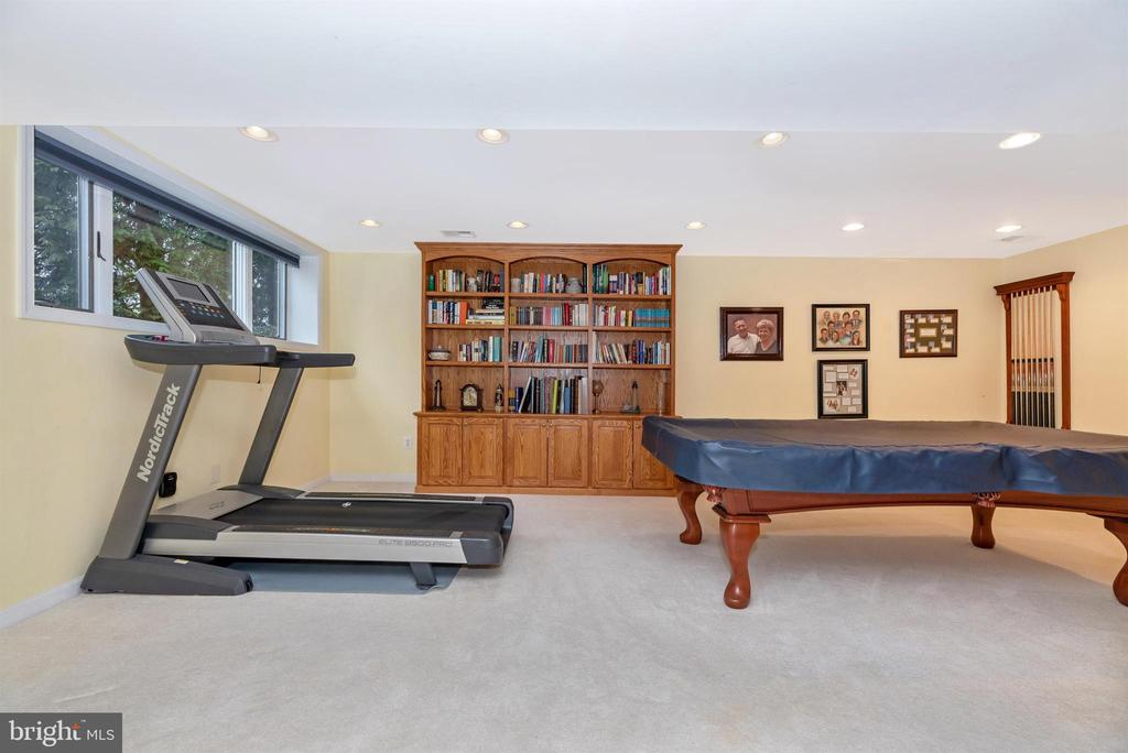 Basement-Rec Room - 10649 FINN DR, NEW MARKET