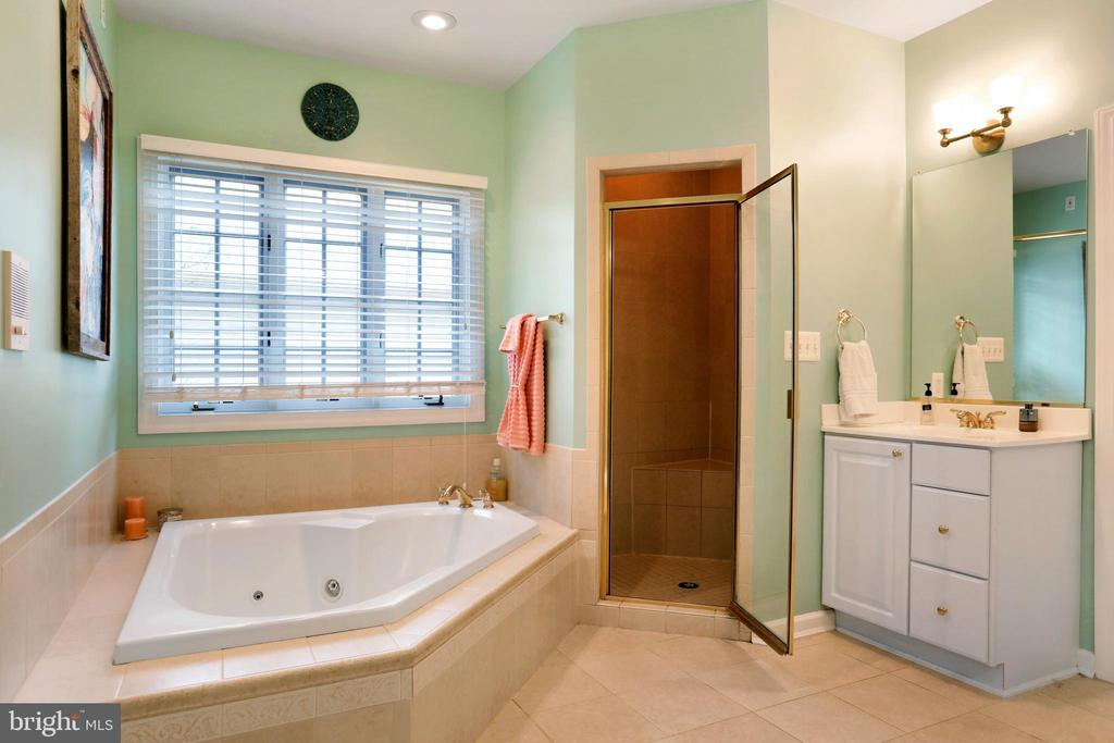 Oversized Jetted Tub - 47747 BRAWNER PL, STERLING