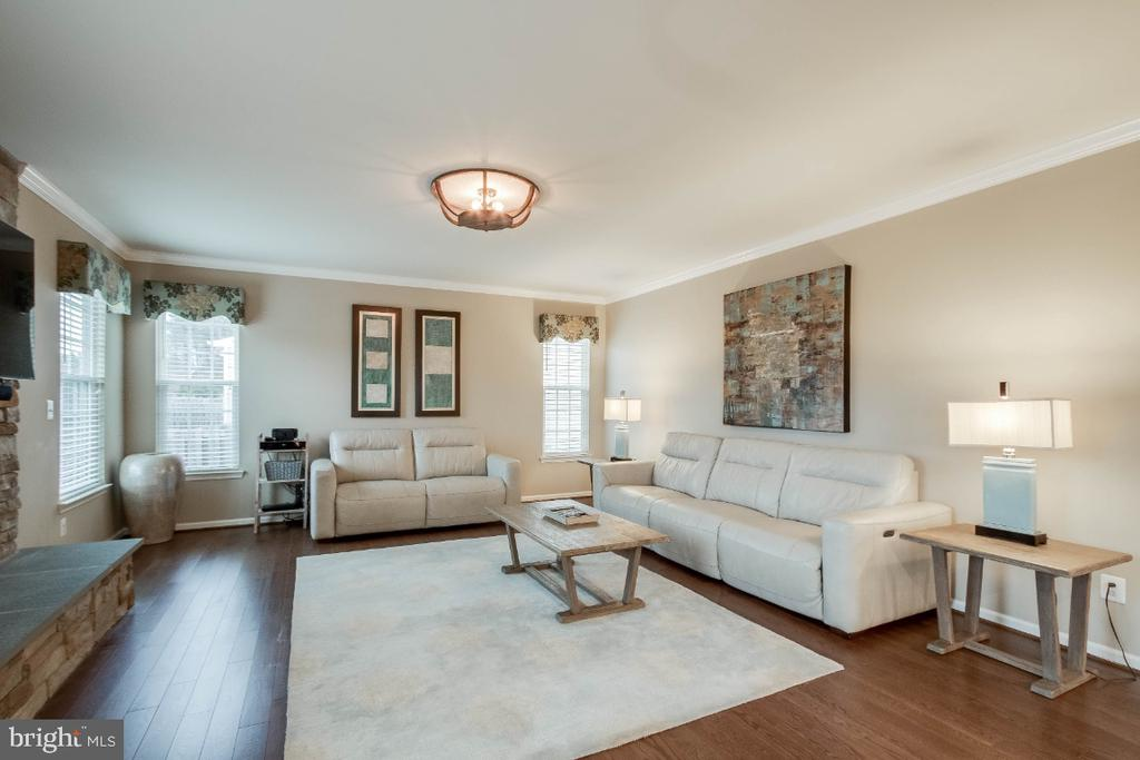 Cozy Family Room with Hardwood Floors - 26003 KIMBERLY ROSE DR, CHANTILLY