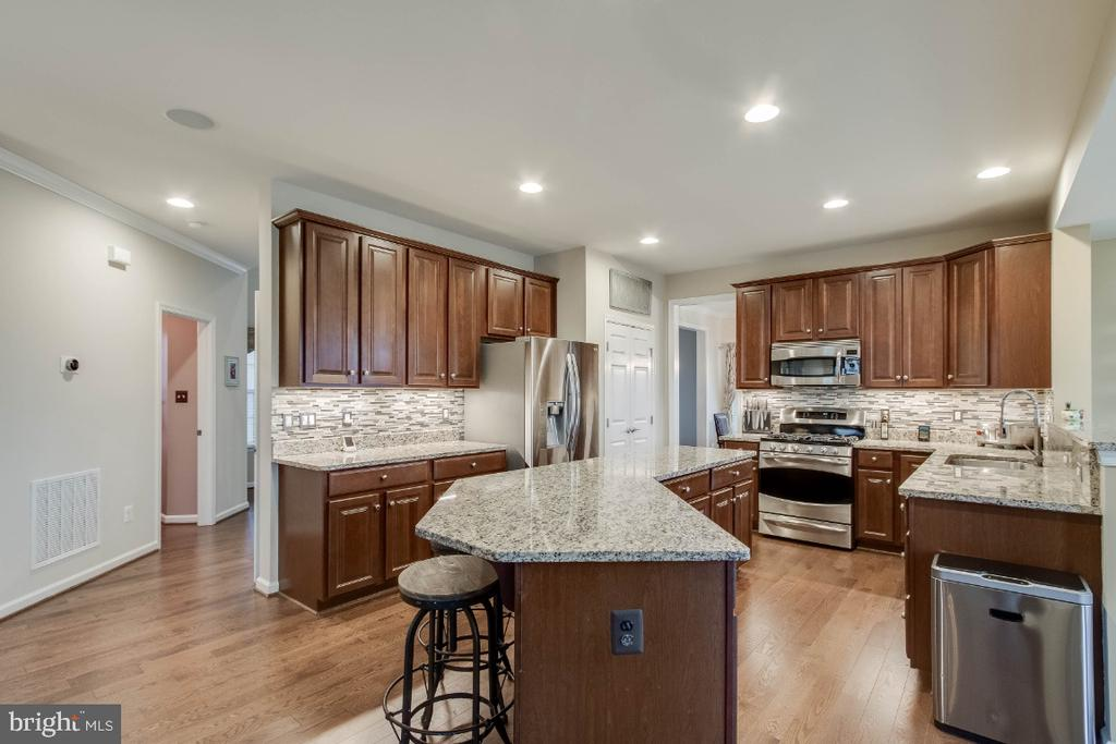 Gourmet Kitchen with Upgraded Cabinets - 26003 KIMBERLY ROSE DR, CHANTILLY