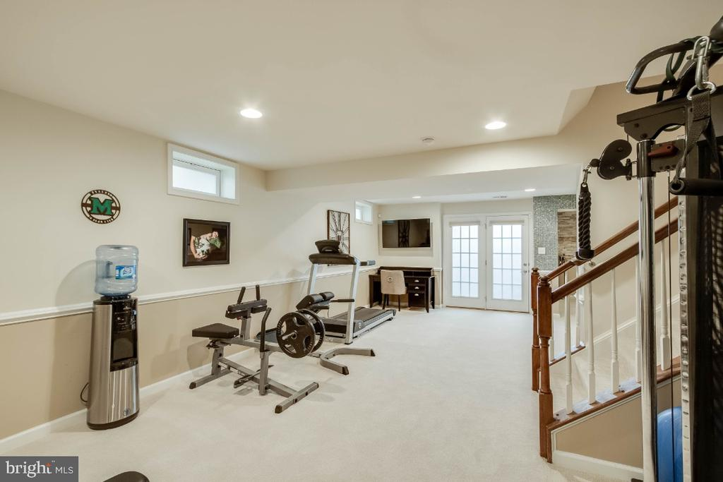 Walk up Level Rec Room - 26003 KIMBERLY ROSE DR, CHANTILLY