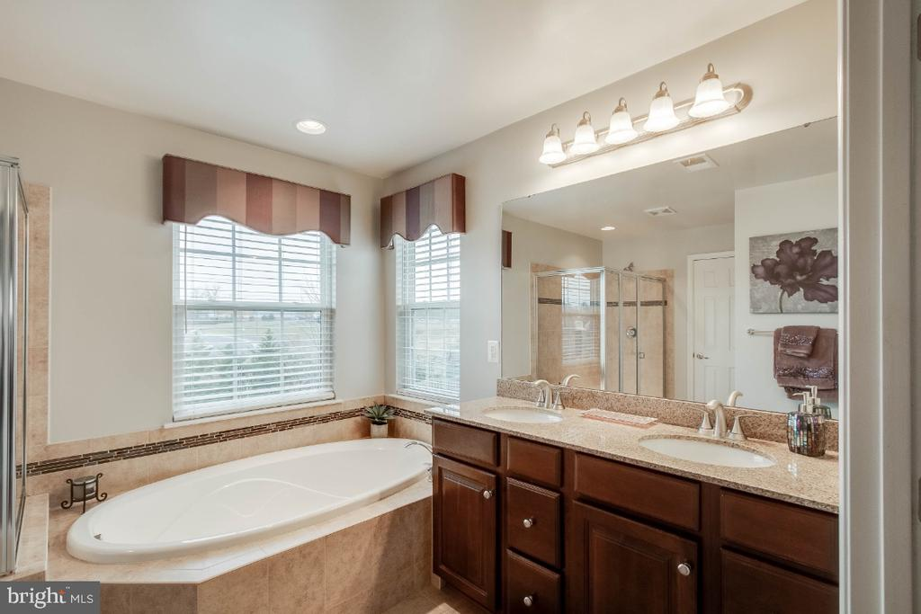 Luxury Master Bath with Soaking Tub - 26003 KIMBERLY ROSE DR, CHANTILLY