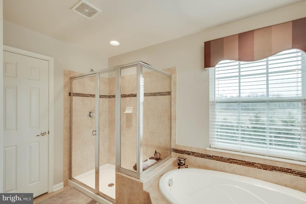 Luxury Master Bath with Separate Shower - 26003 KIMBERLY ROSE DR, CHANTILLY
