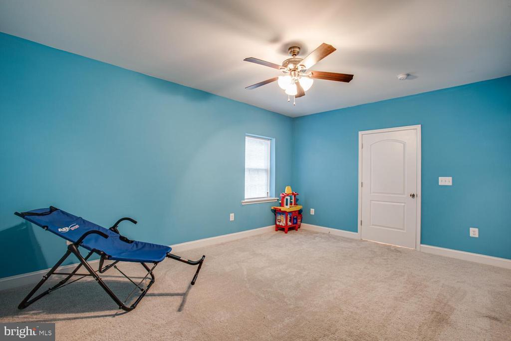 Lower-level bedroom - 2252 PARTLOW RD, BEAVERDAM