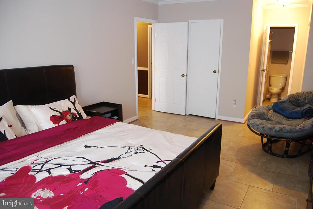 Master Bedroom - 5500 HOLMES RUN PKWY #1517, ALEXANDRIA