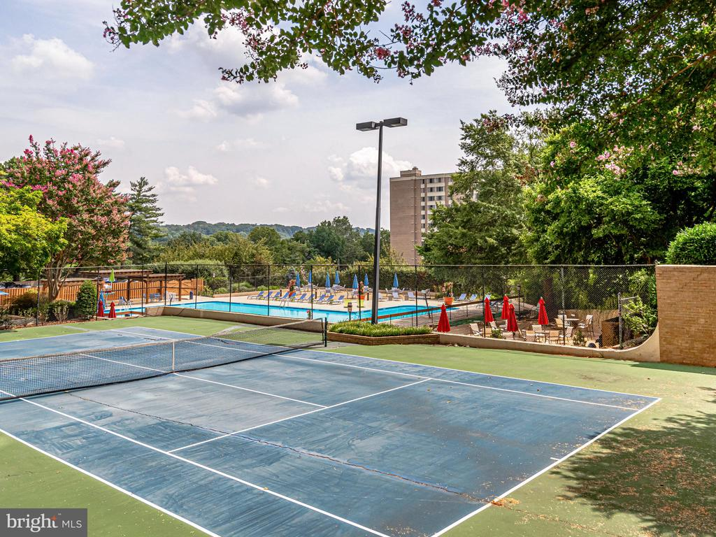 Tennis Court #2 - 5500 HOLMES RUN PKWY #1517, ALEXANDRIA