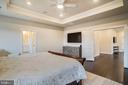 Tray Ceiling w/Recessed Lights & Fan/Light Fixture - 6141 FALLFISH CT, NEW MARKET