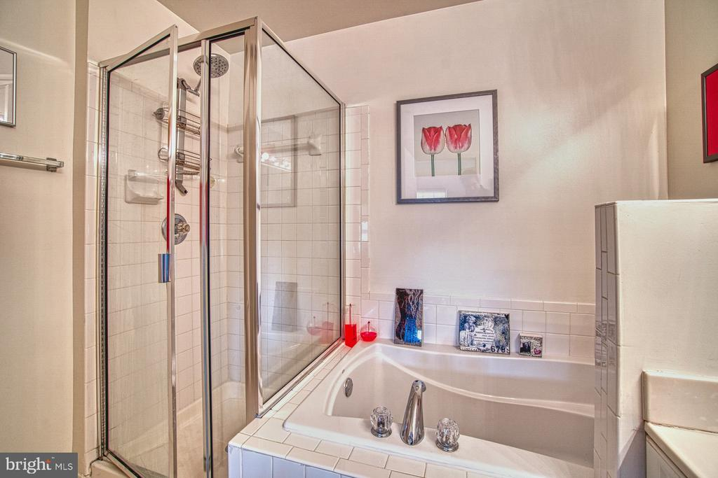 Master Bath - 13388 SPOFFORD RD #304, HERNDON