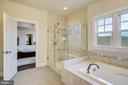 Master Bath Shower & Soaking Tub - 6141 FALLFISH CT, NEW MARKET