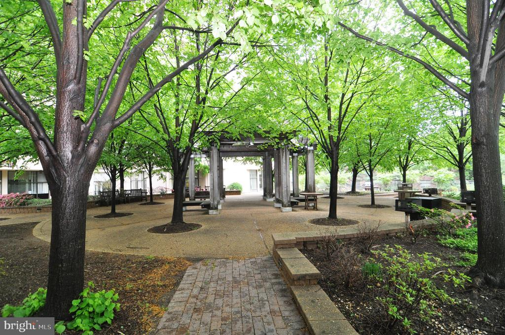Relax in this tree-lined sanctuary at Hyde Park. - 4141 N HENDERSON RD #1011, ARLINGTON