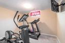 Exercise Room - 64 SANCTUARY LN, STAFFORD