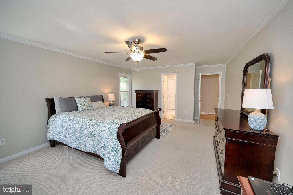Spacious master bedroom - 104 CEDAR CT, LOCUST GROVE