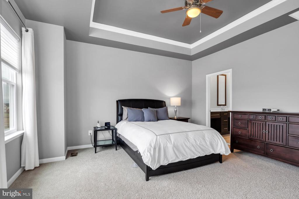 Master bedroom with tray ceiling - 42247 RIGGINS RIDGE TER, BRAMBLETON