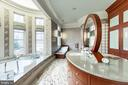 Owner's large bath suite - 10301 FIREFLY CIR, FAIRFAX STATION