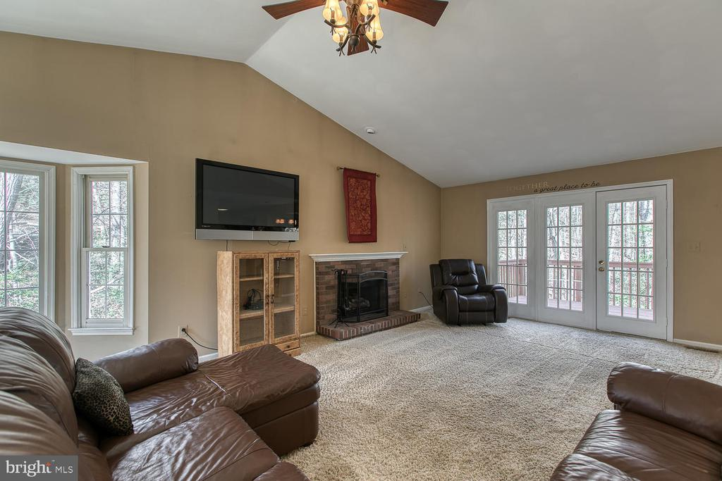 Lots of windows and French door - 3220 TITANIC DR, STAFFORD