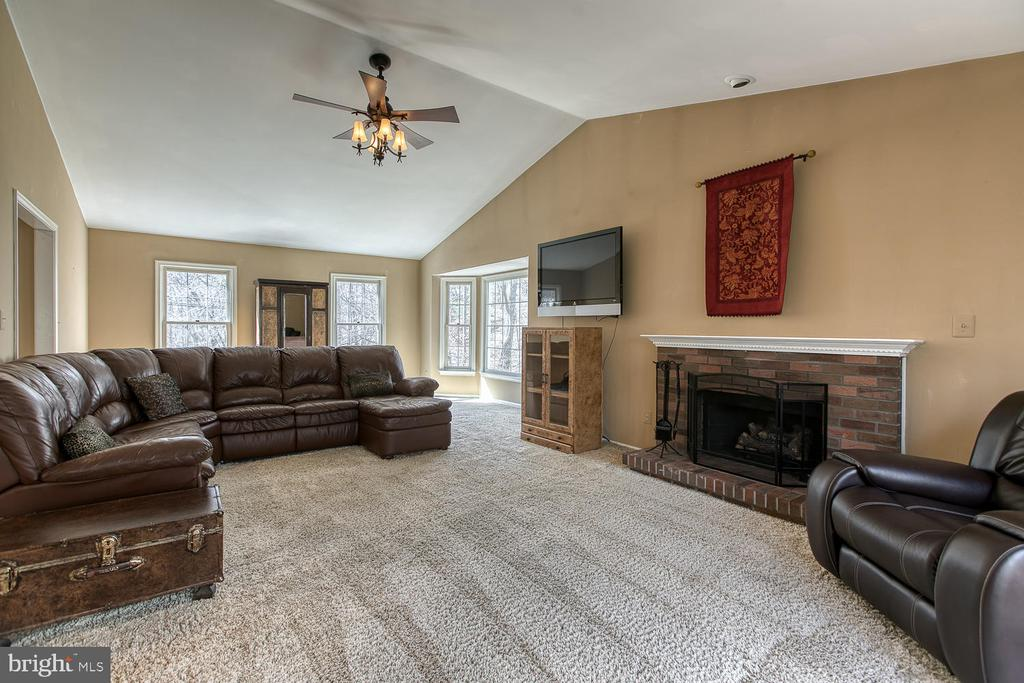 Gas fireplace - 3220 TITANIC DR, STAFFORD