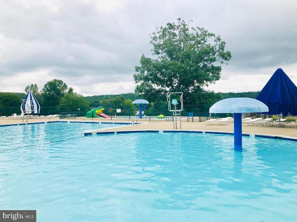 One of two community pools - 3220 TITANIC DR, STAFFORD