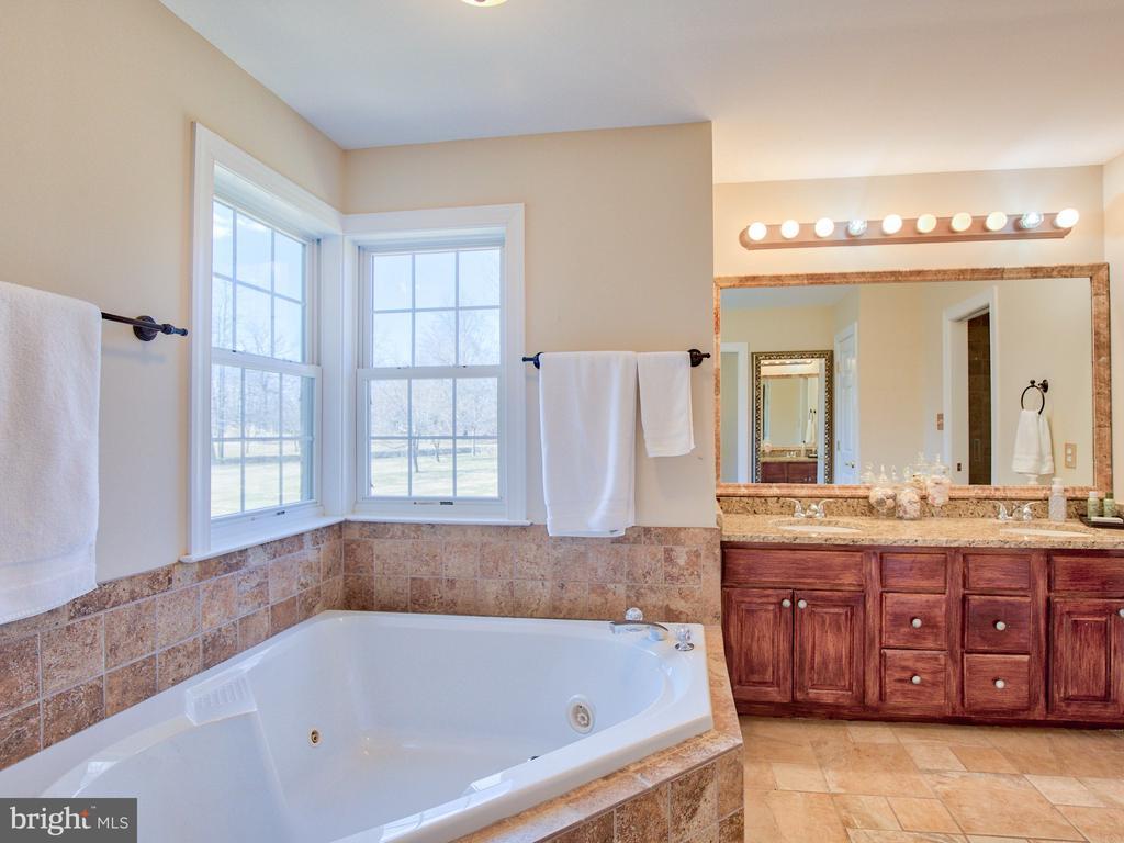 Master bath with granite. - 17244 RAVEN ROCKS RD, BLUEMONT