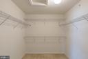 Huge walk in closet - 17156 BELLE ISLE DR, DUMFRIES