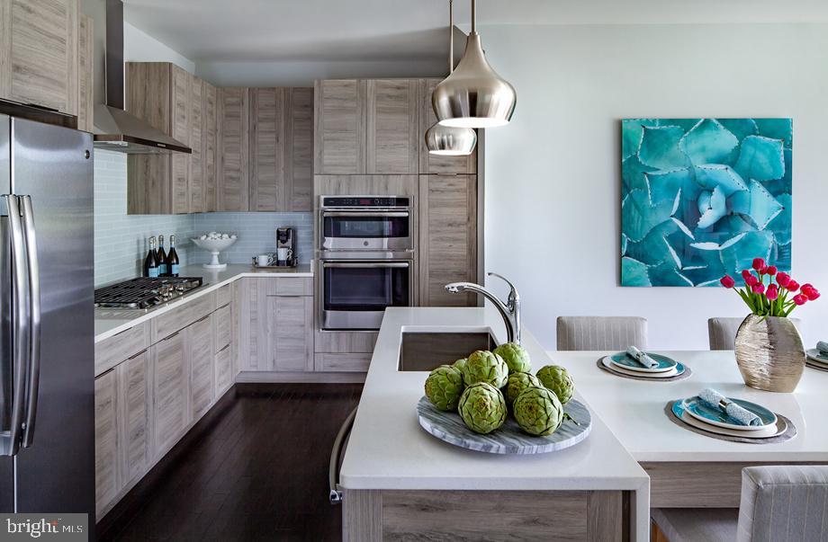 Hayes Kitchen - 23563 NEERSVILLE CORNER TER, ASHBURN
