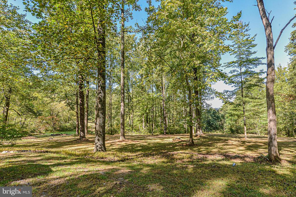 23.34 acres, mostly in forestry conservation - 437 WINDWOOD LN, PARIS