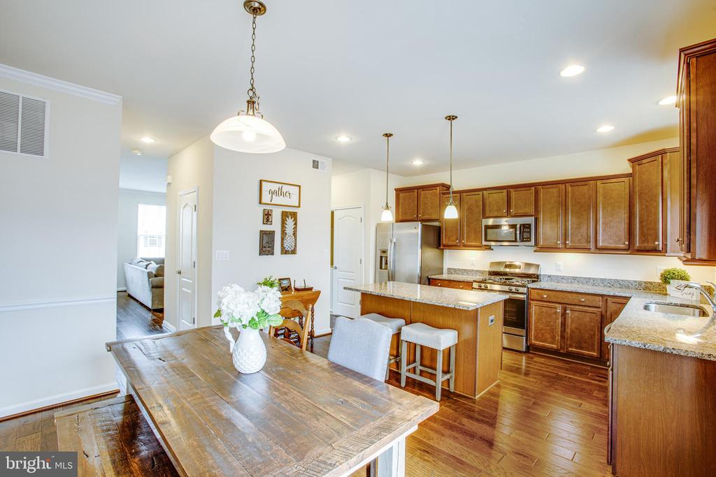 Pendant, and recessed lighting throughout. - 120 TREE LINE DR, FREDERICKSBURG