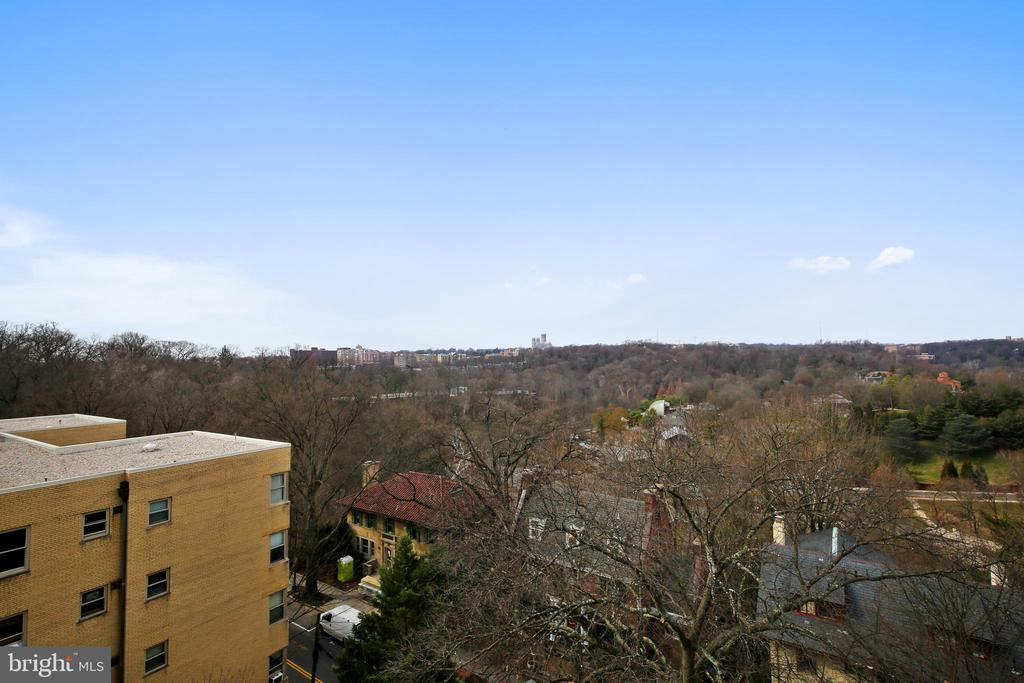 Another view from Roof Deck - 1801 CLYDESDALE PL NW #224, WASHINGTON
