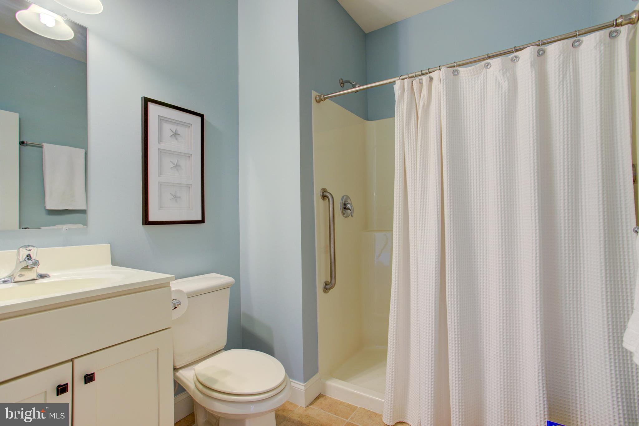 1st floor bath - Large shower stall with grab rail