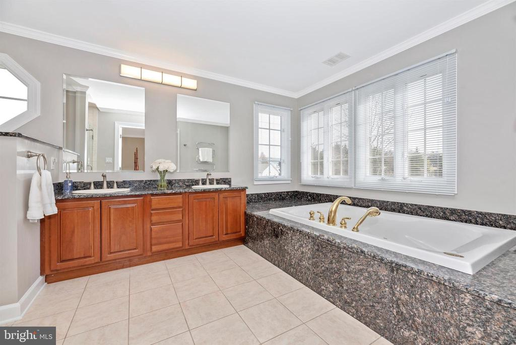 Granite Dual Sinks - 5221 MUIRFIELD DR, IJAMSVILLE