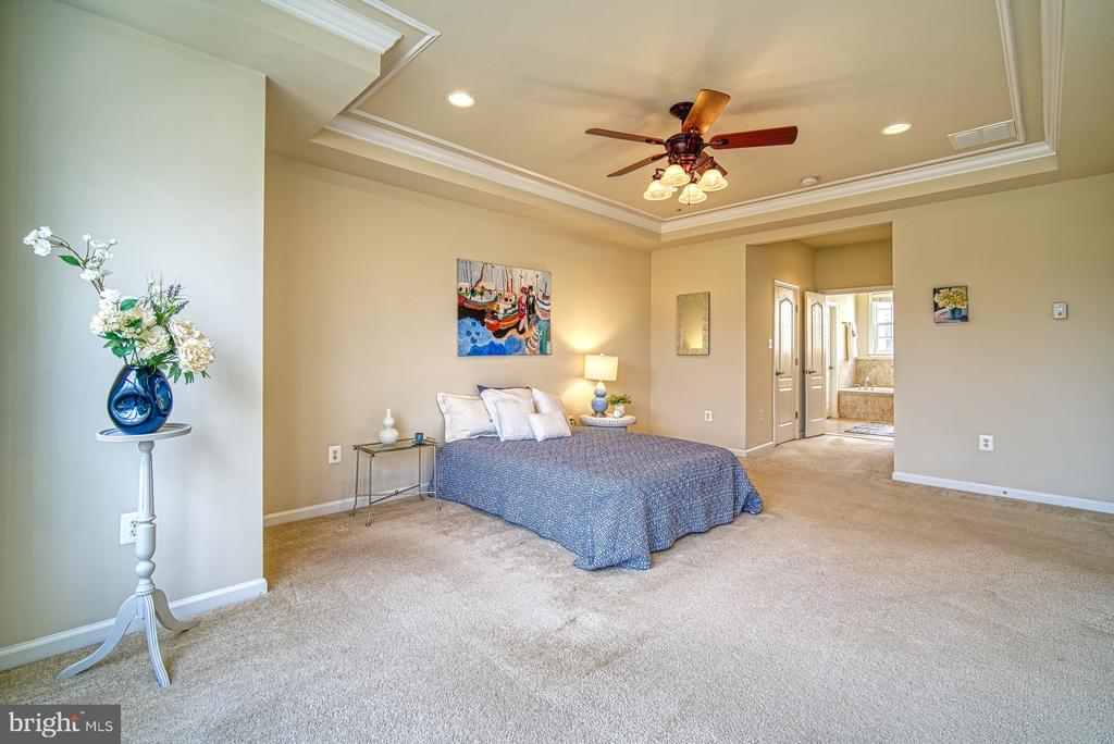 large  master bedroom - 19348 GARDNER VIEW SQ, LEESBURG
