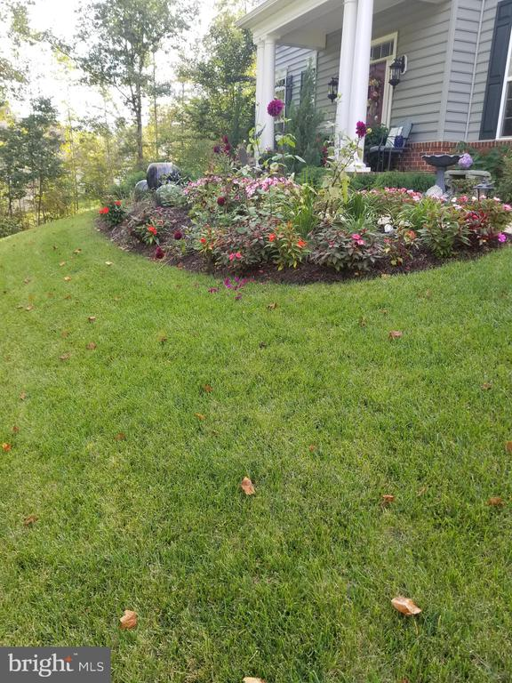 SPRIN AND SUMMER PROFESSIONAL LANDSCAP BEAUTY - 8 SNAPDRAGON DR, STAFFORD