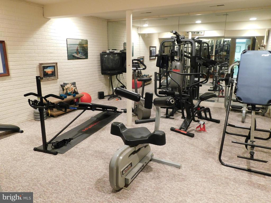 Basement: Home Gym - 11713 WAYNE LN, BUMPASS
