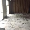Interior with  Sun Filled Windows - 3419 UNIVERSITY BLVD W #102, KENSINGTON