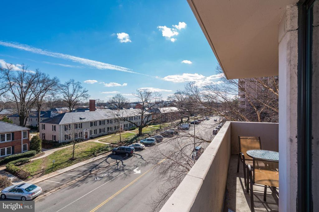 View from Balcony - 4141 HENDERSON RD #324, ARLINGTON