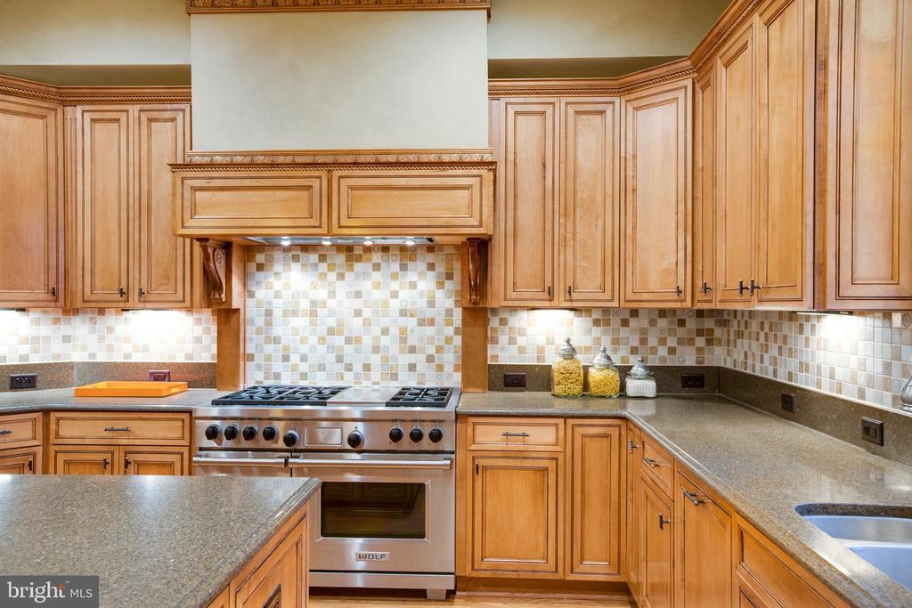 Wolf Range, 3 Wolf Ovens and 3 Dishwashers - 9110 DARA LN, GREAT FALLS
