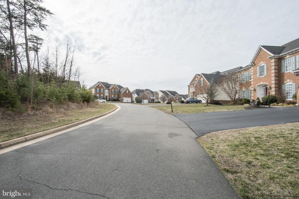 Private Street, only 3 homes! - 43168 HASBROUCK LN, LEESBURG