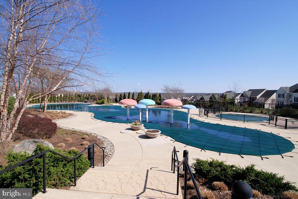 Outdoor Pool - 43168 HASBROUCK LN, LEESBURG