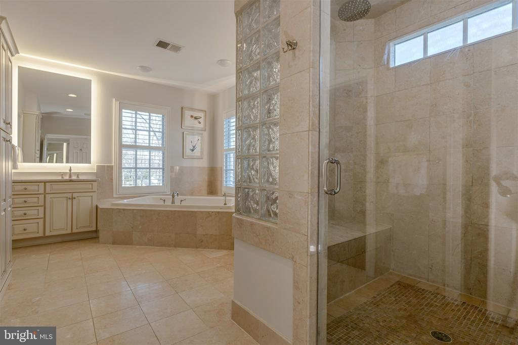 Over-Sized Steam Shower - 8429 BROOK RD, MCLEAN