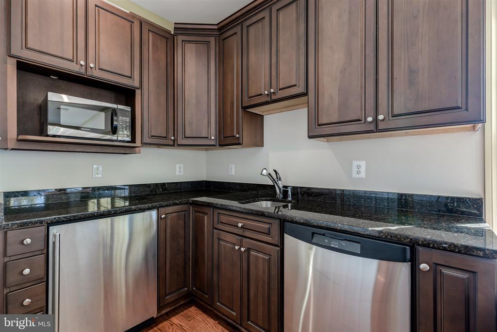 Bonus Suite Kitchen - 8429 BROOK RD, MCLEAN