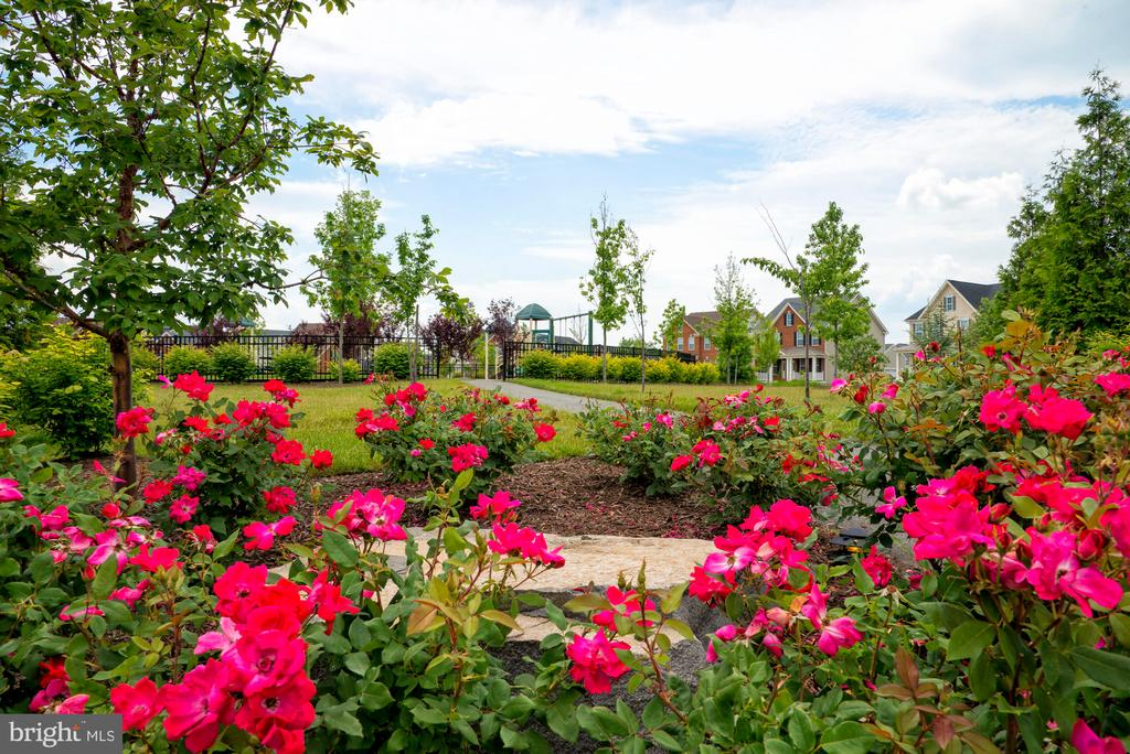 Community Parks - 23561 HOPEWELL MANOR TER, ASHBURN