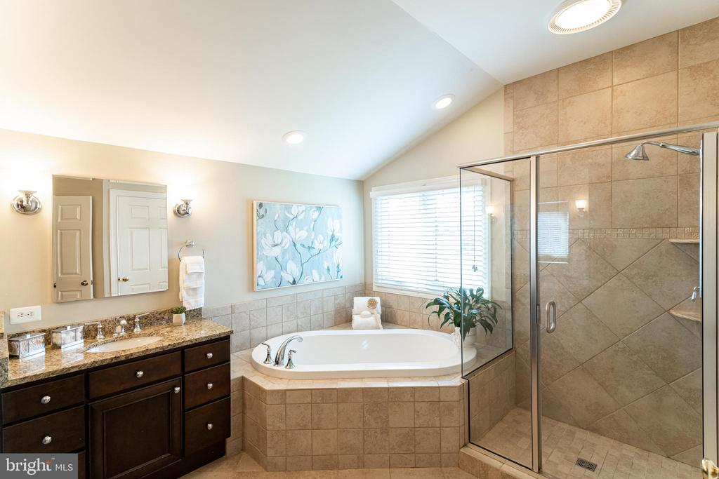 Owner's Luxurious Bath - 17716 CRICKET HILL DR, GERMANTOWN